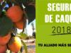 SEGURO DE CAQUI :EL AÑO 2018, RÉCORD HISTÓRICO DE INDEMNIZACIONES PARA LOS PRODUCTORES DE CAQUI, CON MÁS DE 34 MILLONES DE EUROS